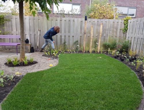 Een vrolijke tuin voor het hele gezin
